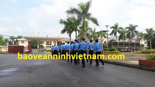 Cung cấp bảo vệ chuyên nghiệp tại Nghệ An